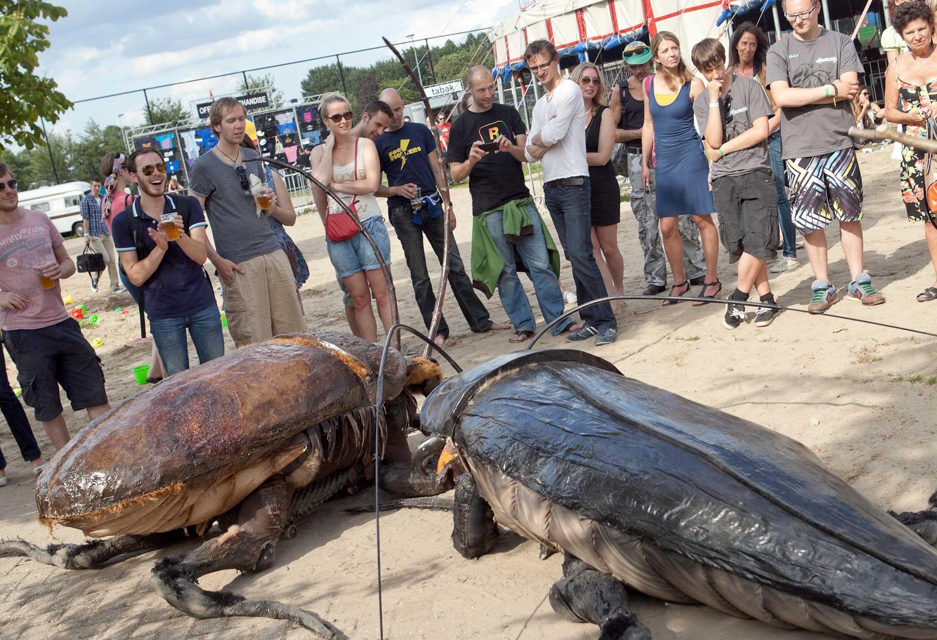 Big Bugs Show
