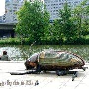 Big Bugs Strassentheater Show