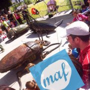 Big Bugs Show at MAF Festival Santander