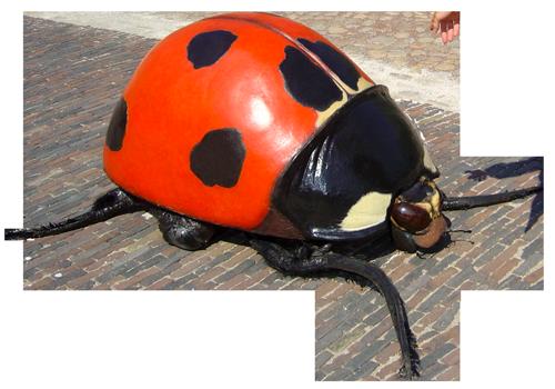 Big Bugs Show - Ladybug